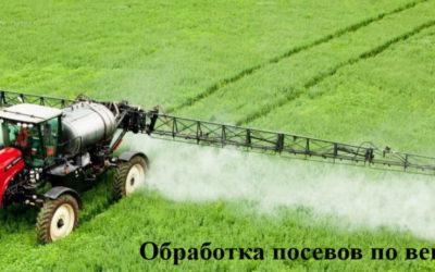 Советы аграриям: Как эффективно проводить комплексную защиту по вегетации сельскохозяйственных культур